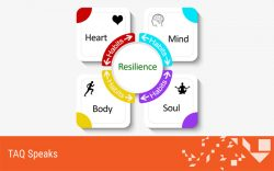 Habits that generate resilience